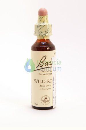 Wild Rose Bach™ Original Flower Remedy