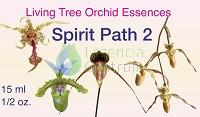 Spirit Path 2 összetett orchidea eszencia