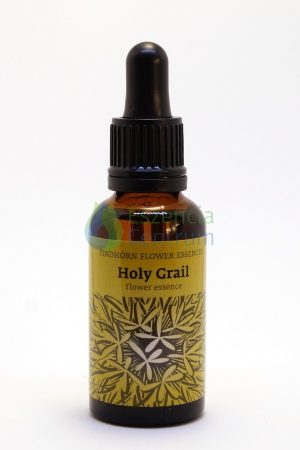 """""""Holy Grail"""" Combo Essence"""