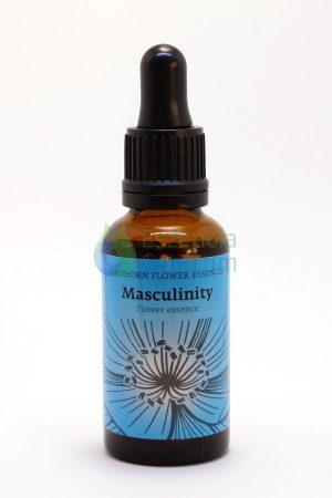 """""""Masculinity"""" Combo Essence"""