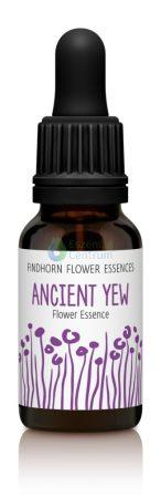 Ancient Yew Findhorn Flower Essence 15ml.