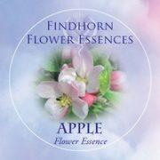 Apple Findhorn Flower Essence 15ml.