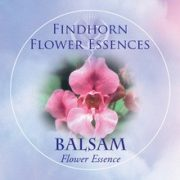 Balsam Findhorn Flower Essence 15ml.
