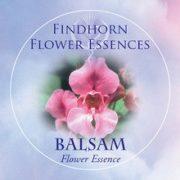 Balsam Findhorn Flower Essence 15ml.