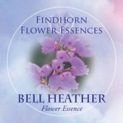 Hamvas hanga (Erica cinerea – Bell Heather) Findhorn Virágeszencia 15ml.