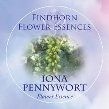 Iona Pennywort Findhorn Flower Essence 15ml.