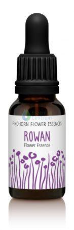 Rowan Findhorn Flower Essence 15ml.