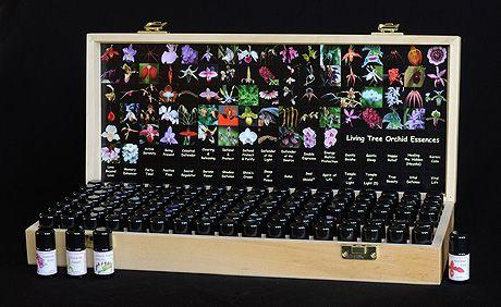 Living Tree Orchid Essences Test Kit