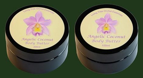 Angelic Coconut Body Butter