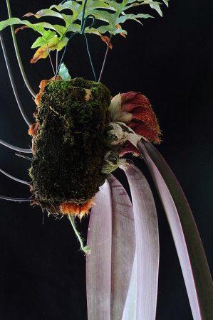 Shadow Warrior orchidea eszencia