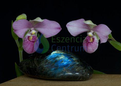 Clarity of Spirit orchidea eszencia