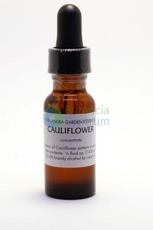 Cauliflower (14,2 cca. 15ml)