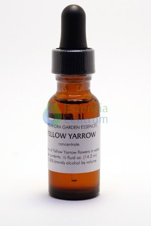 Yellow Yarrow (14,2 cca. 15ml)