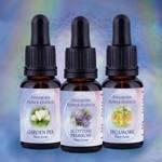 Findhorn Flower Essences
